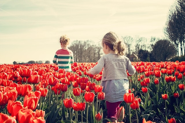 girls in red tulips